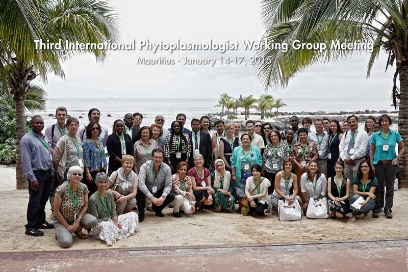 IPWG2015GroupPicture s